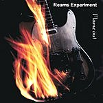 Reams Experiment Flameout