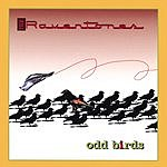 The Raventones Odd Birds