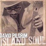 David Pilgrim Island Soul