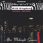Ron Levy After Midnight Grooves