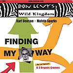 Ron Levy Finding My Way