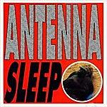 Antenna Sleep