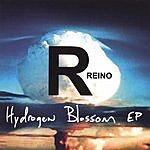 Rayno Hydrogen Blossom EP