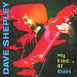 Dave Shepley My Kind Of Blues