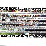 David Rovics Hang A Flag In The Window