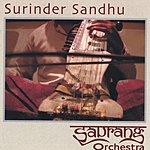 Surinder Sandhu Saurang Orchestra