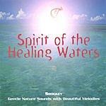 Shockey Spirit Of The Healing Waters