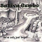 Sativa Gumbo We've Only Just Begun