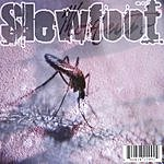 Slewfoot Mosquito
