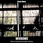 Steve Nieve Windows