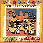 Sones De Mexico Ensemble Fandango On 18th Street
