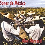 Sones De Mexico Ensemble Que Florezca! (Let It Bloom)