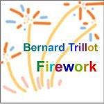 Bernard Trillot Firework