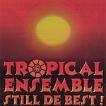 Tropical Ensemble Still De Best
