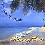 Tony Saunders & Paradize Whispering Waters