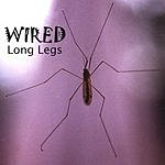 The Wired Band Long Legs