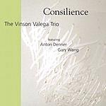 Vinson Valega Trio Consilience
