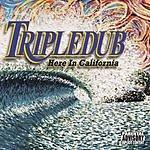 Tripledub Here In California