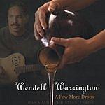 Wendell Warrington A Few More Drops