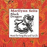 Marilynn Seits Black Dragon: Music for Feng Shui, Tai Chi & Acupuncture