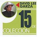 David Lee Garza 15 De Colleccion: David Lee Garza