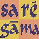 Banasree Sengupta Harmonium