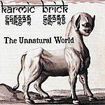Karmic Brick The Unnatural World