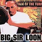 Big Sir Loon Big Sir Loon