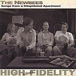 The Newbees Songs From A Dilapidated Apartment