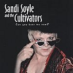 Sandi Soyle & The Cultivators Can You Hear Me Now