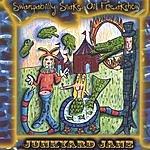 Junkyard Jane Swampabilly Snake Oil Freakshow
