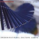 Per Boysen Organisational Culture Loops