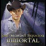 Jose Manuel Figueroa Inmortal