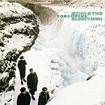 Echo & The Bunnymen Porcupine (Remastered) (Bonus Tracks)