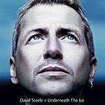 David Steele Underneath The Ice