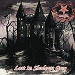 Morgul Lost In Shadows Grey