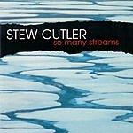 Stew Cutler So Many Streams