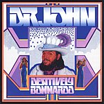 Dr. John Destively Bonnaroo