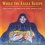 Alice Gomez While The Eagle Sleeps