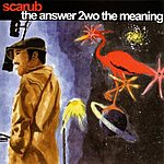 Scarub The Answer 2wo the Meaning