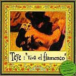Teye Viva el flamenco