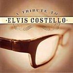 Patrik Tanner A Tribute To Elvis Costello
