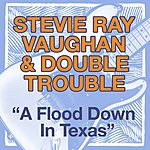 Stevie Ray Vaughan & Double Trouble A Flood Down In Texas
