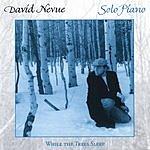 David Nevue While The Trees Sleep
