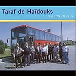 Taraf De Haïdouks Such Was My Life