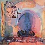 Peter Kater Through Windows & Walls