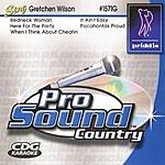 Gretchen Wilson Sing Like Gretchen Wilson