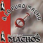 Banda Machos A Lo Puro Macho
