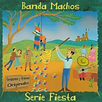 Banda Machos Serie Fiesta