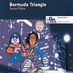 Bermuda Triangle Secret Pillow